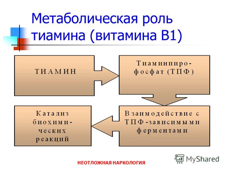 НЕОТЛОЖНАЯ НАРКОЛОГИЯ Метаболическая роль тиамина (витамина В1)
