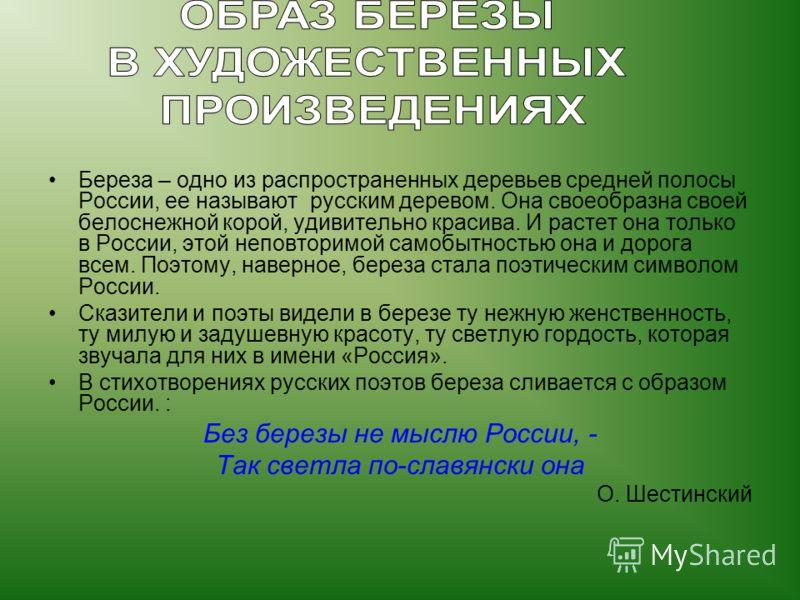 Береза – одно из распространенных деревьев средней полосы России, ее называют русским деревом. Она своеобразна своей белоснежной корой, удивительно красива. И растет она только в России, этой неповторимой самобытностью она и дорога всем. Поэтому, нав