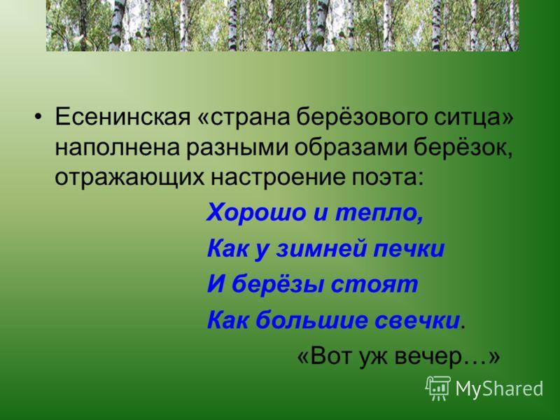 Есенинская «страна берёзового ситца» наполнена разными образами берёзок, отражающих настроение поэта: Хорошо и тепло, Как у зимней печки И берёзы стоят Как большие свечки. «Вот уж вечер…»
