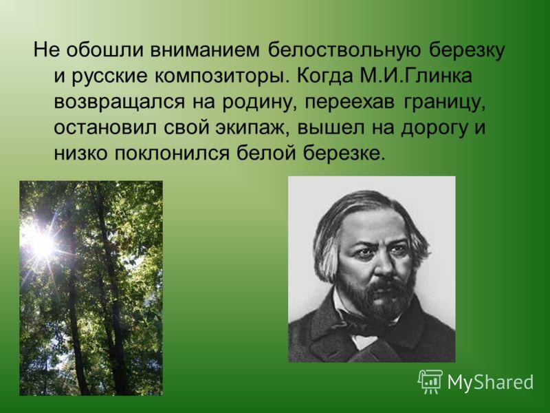 Не обошли вниманием белоствольную березку и русские композиторы. Когда М.И.Глинка возвращался на родину, переехав границу, остановил свой экипаж, вышел на дорогу и низко поклонился белой березке.