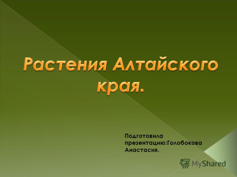 Подготовила презентацию:Голобокова Анастасия.