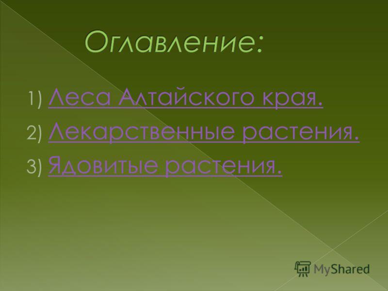 1) Леса Алтайского края. Леса Алтайского края. 2) Лекарственные растения. Лекарственные растения. 3) Ядовитые растения. Ядовитые растения.