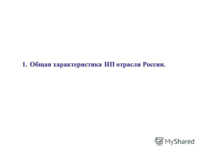 1.Общая характеристика НП отрасли России.