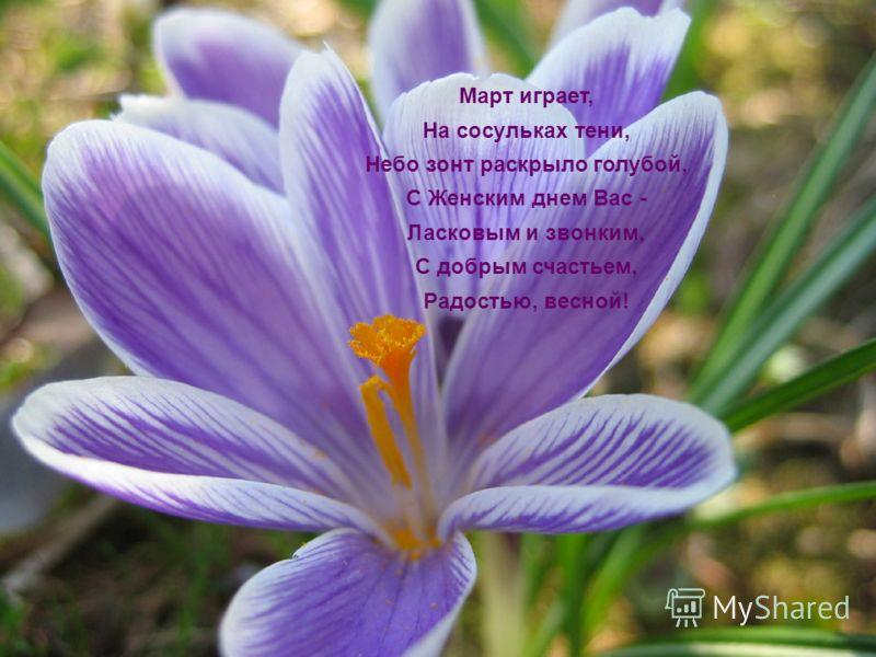 Март играет, На сосульках тени, Небо зонт раскрыло голубой, С Женским днем Вас - Ласковым и звонким, С добрым счастьем, Радостью, весной!