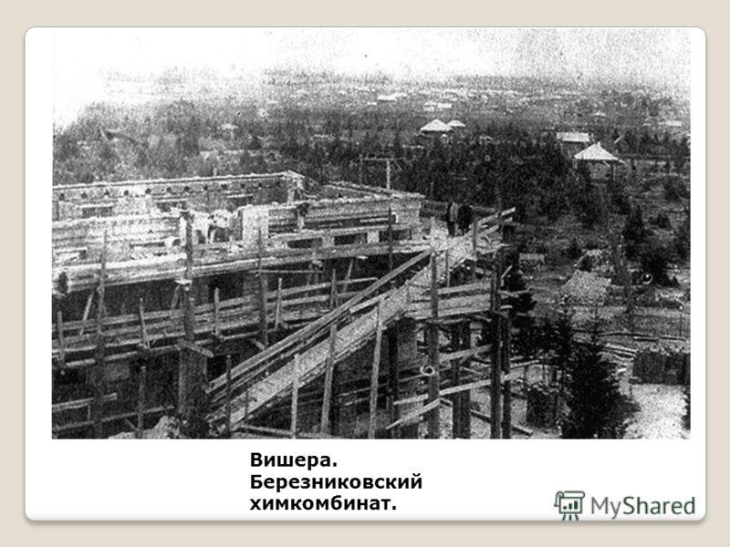 Вишера. Березниковский химкомбинат.