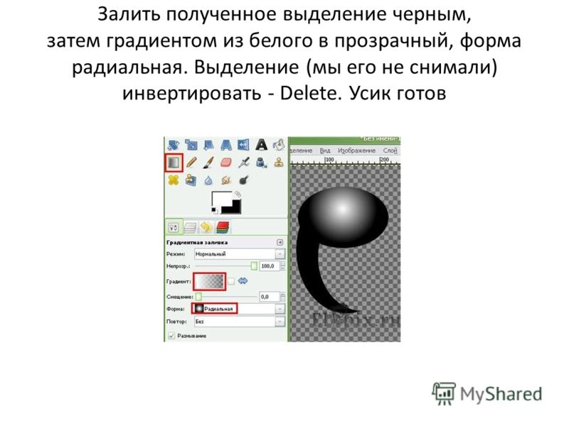 Залить полученное выделение черным, затем градиентом из белого в прозрачный, форма радиальная. Выделение (мы его не снимали) инвертировать - Delete. Усик готов
