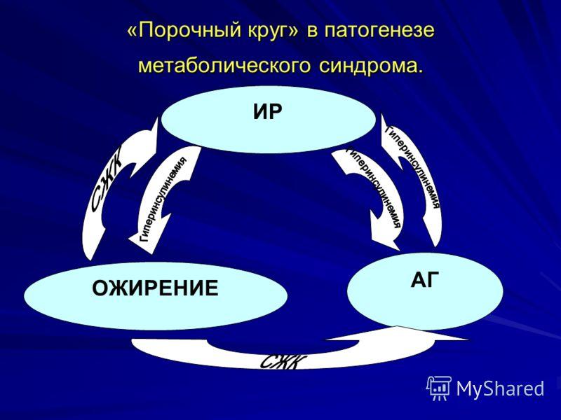 «Порочный круг» в патогенезе метаболического синдрома. ИР АГ ОЖИРЕНИЕ