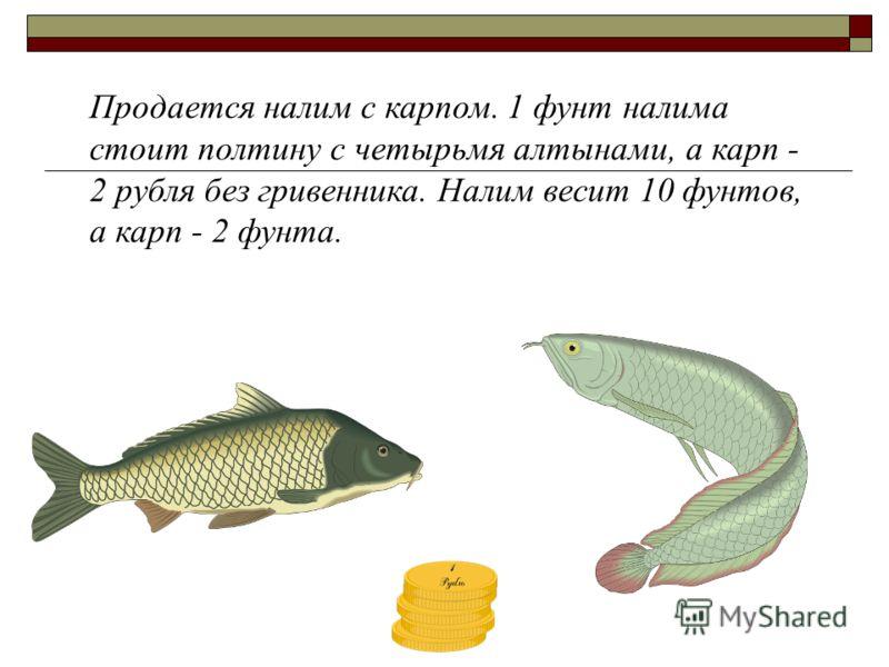 Продается налим с карпом. 1 фунт налима стоит полтину с четырьмя алтынами, а карп - 2 рубля без гривенника. Налим весит 10 фунтов, а карп - 2 фунта.