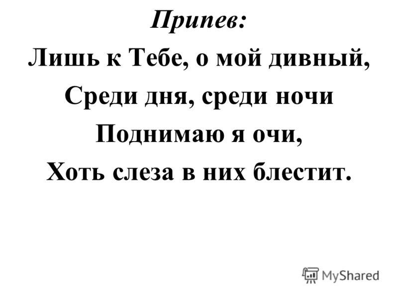 Припев: Лишь к Тебе, о мой дивный, Среди дня, среди ночи Поднимаю я очи, Хоть слеза в них блестит.