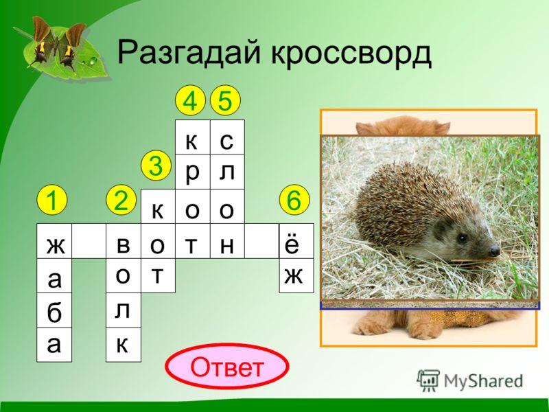 Какие бывают животные? Окружающий мир 2 класс