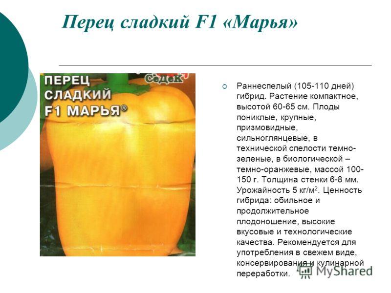 Перец сладкий F1 «Марья» Раннеспелый (105-110 дней) гибрид. Растение компактное, высотой 60-65 см. Плоды пониклые, крупные, призмовидные, сильноглянцевые, в технической спелости темно- зеленые, в биологической – темно-оранжевые, массой 100- 150 г. То