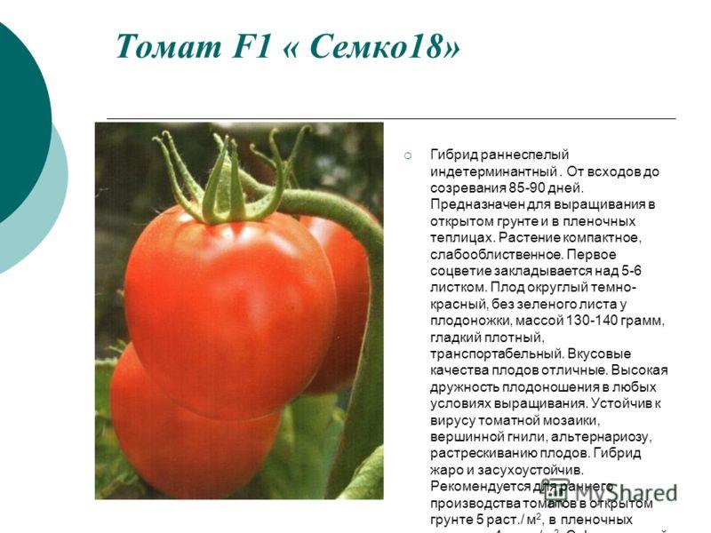 Томат F1 « Семко18» Гибрид раннеспелый индетерминантный. От всходов до созревания 85-90 дней. Предназначен для выращивания в открытом грунте и в пленочных теплицах. Растение компактное, слабооблиственное. Первое соцветие закладывается над 5-6 листком