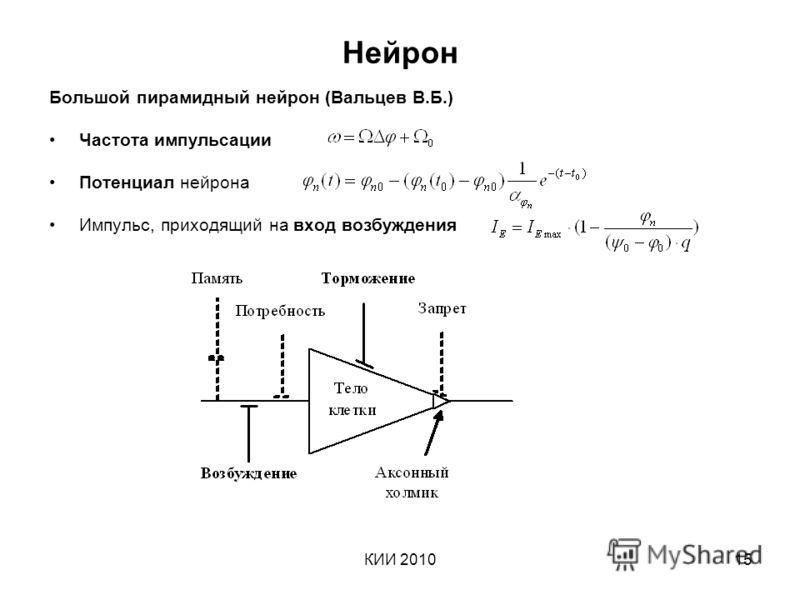 КИИ 201015 Нейрон Большой пирамидный нейрон (Вальцев В.Б.) Частота импульсации Потенциал нейрона Импульс, приходящий на вход возбуждения