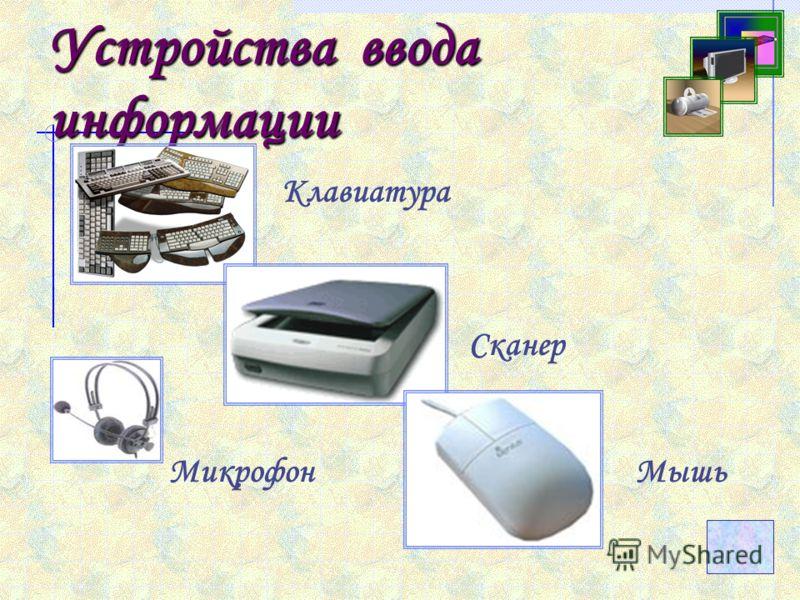 Устройства ввода информации Клавиатура СканерМышь Микрофон