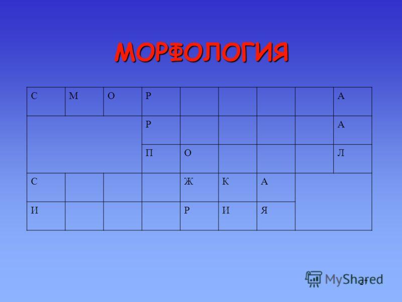 26 МОРФОЛОГИЯ КРОССВОРД 4. 2. 5. 1. 3.