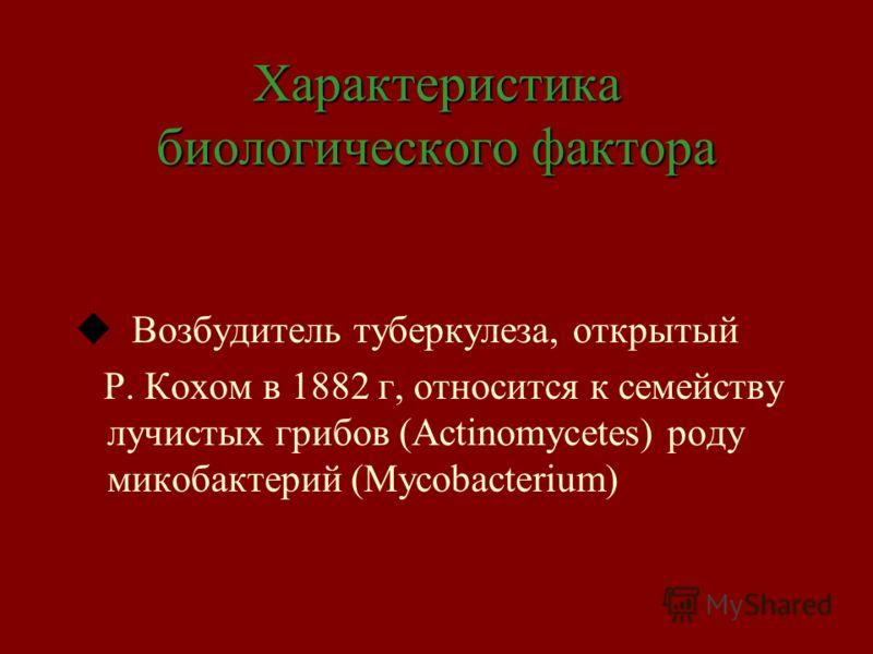 Характеристика биологического фактора u Возбудитель туберкулеза, открытый Р. Кохом в 1882 г, относится к семейству лучистых грибов (Actinomycetes) роду микобактерий (Mycobacterium)