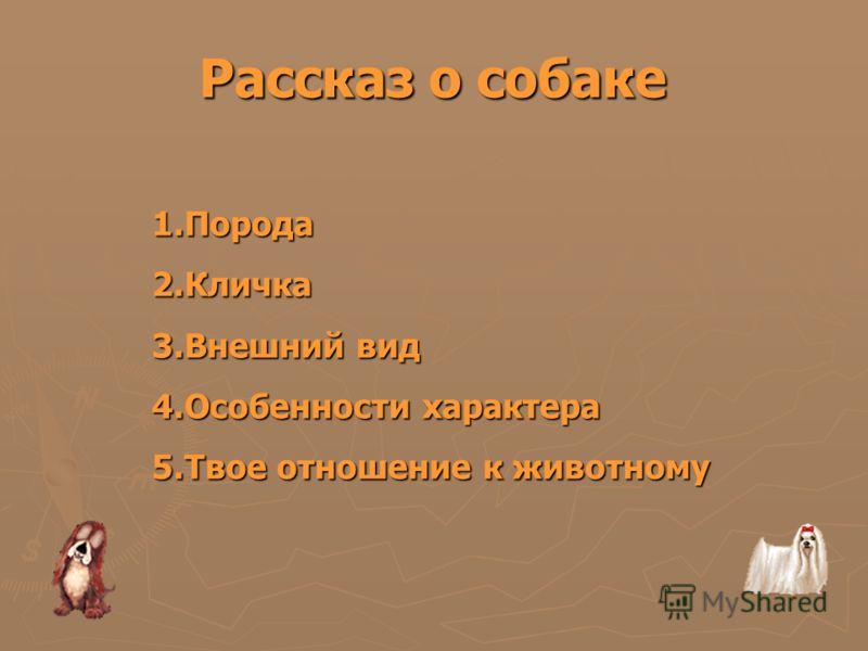 Рассказ о собаке 1.Порода 2.Кличка 3.Внешний вид 4.Особенности характера 5.Твое отношение к животному