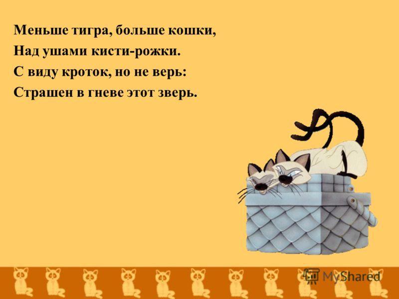 Меньше тигра, больше кошки, Над ушами кисти-рожки. С виду кроток, но не верь: Страшен в гневе этот зверь.
