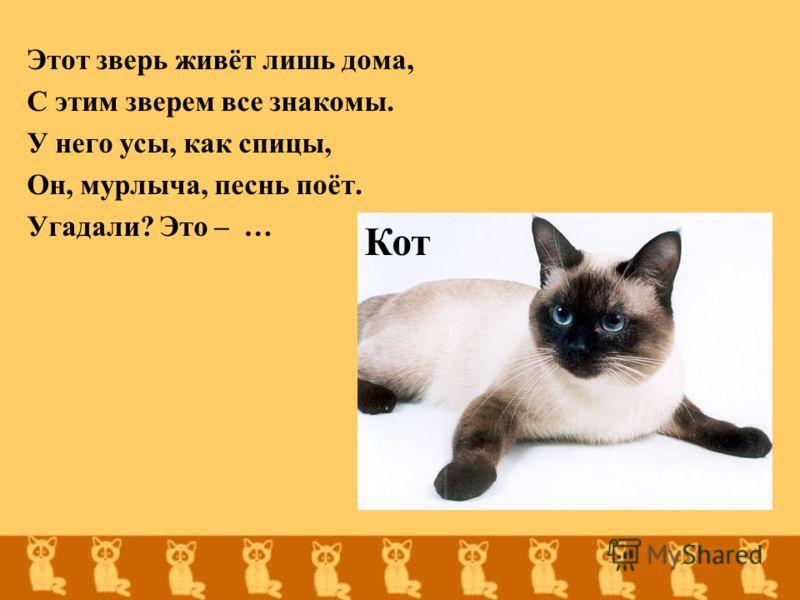 Этот зверь живёт лишь дома, С этим зверем все знакомы. У него усы, как спицы, Он, мурлыча, песнь поёт. Угадали? Это – … Кот