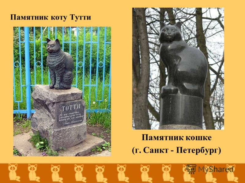 Памятник коту Тутти Памятник кошке (г. Санкт - Петербург)