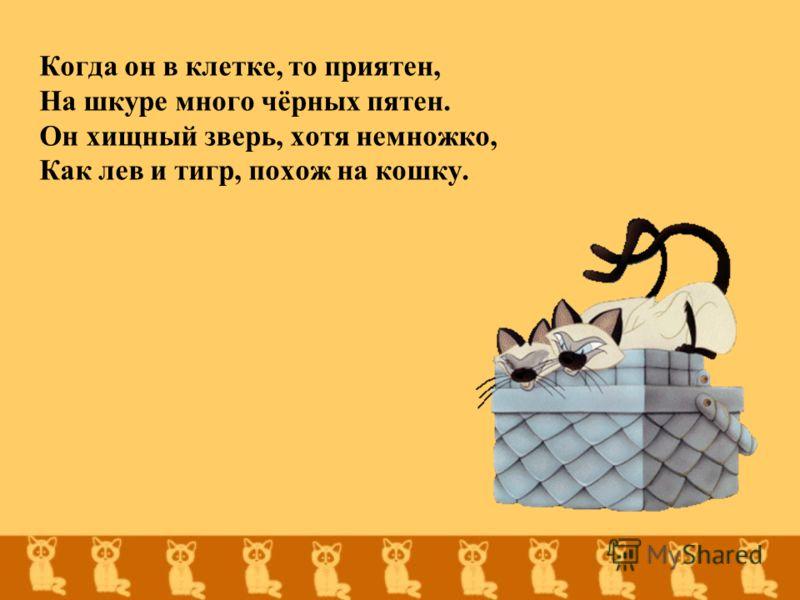 Когда он в клетке, то приятен, На шкуре много чёрных пятен. Он хищный зверь, хотя немножко, Как лев и тигр, похож на кошку.