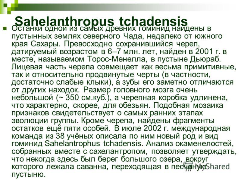 Sahelanthropus tchadensis Останки одной из самых древних гоминид найдены в пустынных землях северного Чада, недалеко от южного края Сахары. Превосходно сохранившийся череп, датируемый возрастом в 6–7 млн. лет, найден в 2001 г. в месте, называемом Тор
