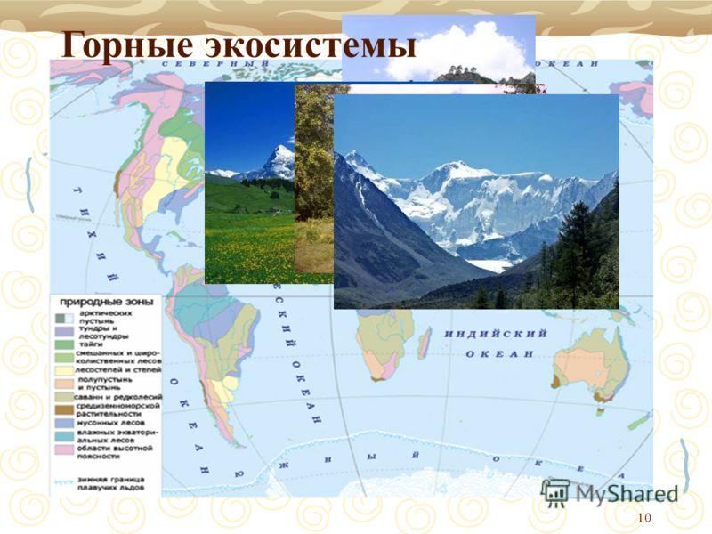 10 Горные экосистемы