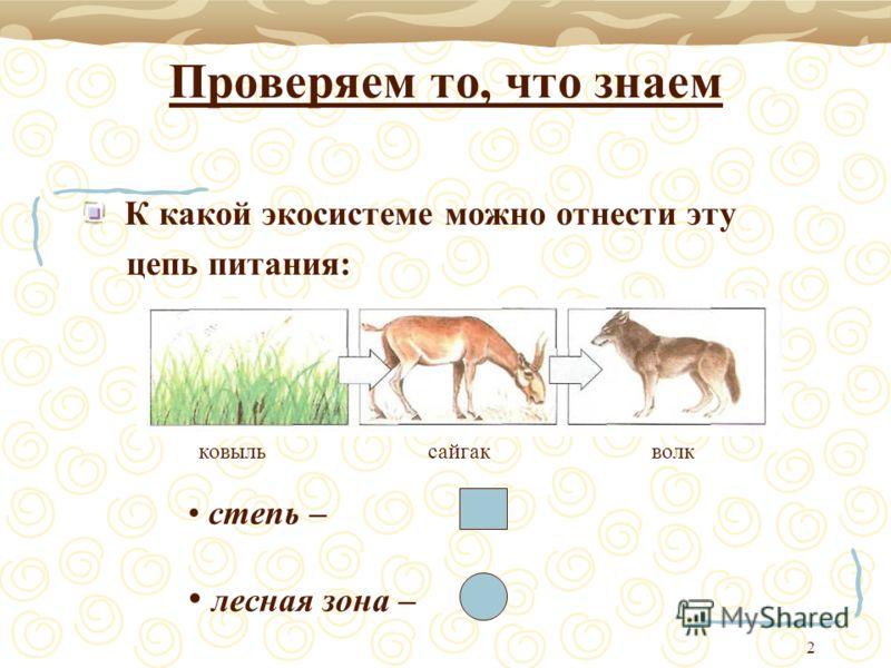 2 Проверяем то, что знаем К какой экосистеме можно отнести эту цепь питания: ковыль сайгак волк степь – лесная зона –