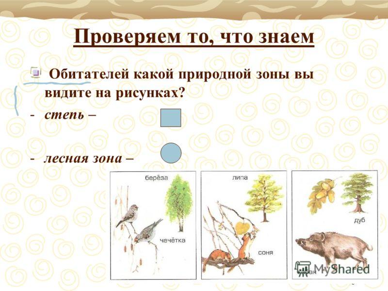 6 Проверяем то, что знаем Обитателей какой природной зоны вы видите на рисунках? -степь – -лесная зона –