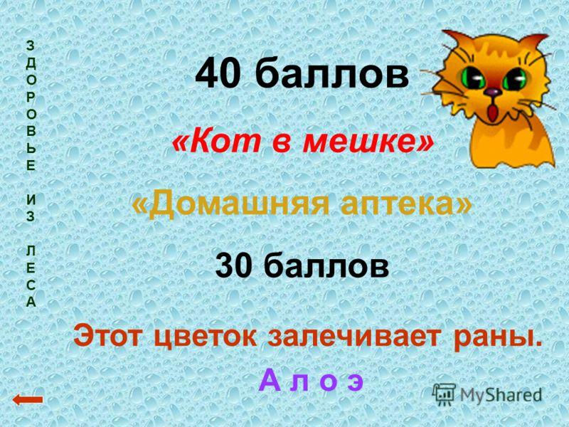 ЗДОРОВЬЕИЗЛЕСАЗДОРОВЬЕИЗЛЕСА 40 баллов «Кот в мешке» «Домашняя аптека» 30 баллов Этот цветок залечивает раны. А л о э