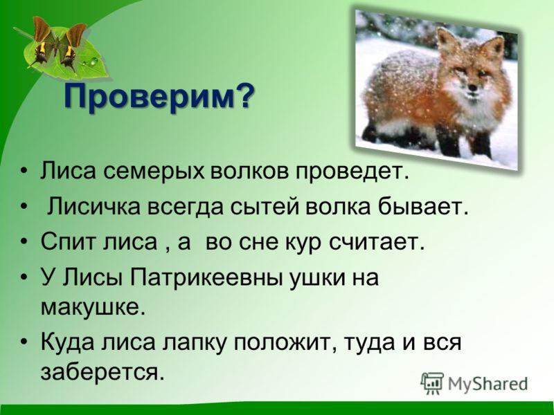 Проверим? Лиса семерых волков проведет. Лисичка всегда сытей волка бывает. Спит лиса, а во сне кур считает. У Лисы Патрикеевны ушки на макушке. Куда лиса лапку положит, туда и вся заберется.