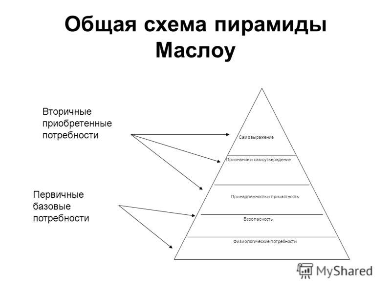 Общая схема пирамиды Маслоу Самовыражение Признание и самоутверждение Принадлежность и причастность Безопасность Физиологические потребности Вторичные приобретенные потребности Первичные базовые потребности