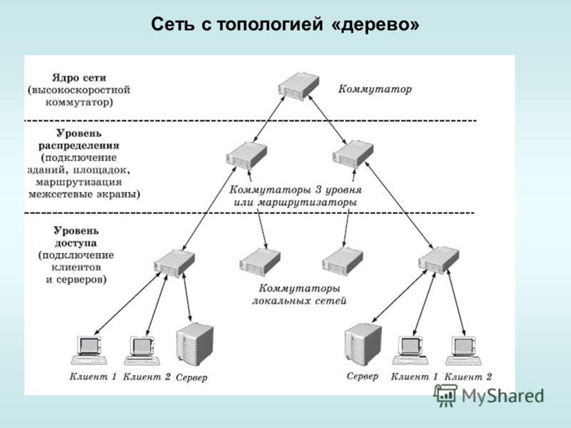Сеть с топологией «дерево»