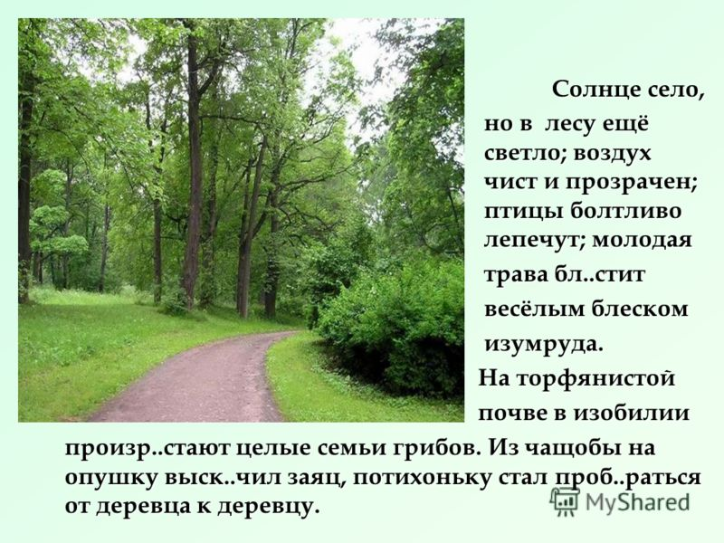 « Поэзия разлита везде, она вокруг нас. Взгляните на эти деревья, небо – отовсюду веет красотой и жизнью, а где красота и жизнь – там и поэзия.»