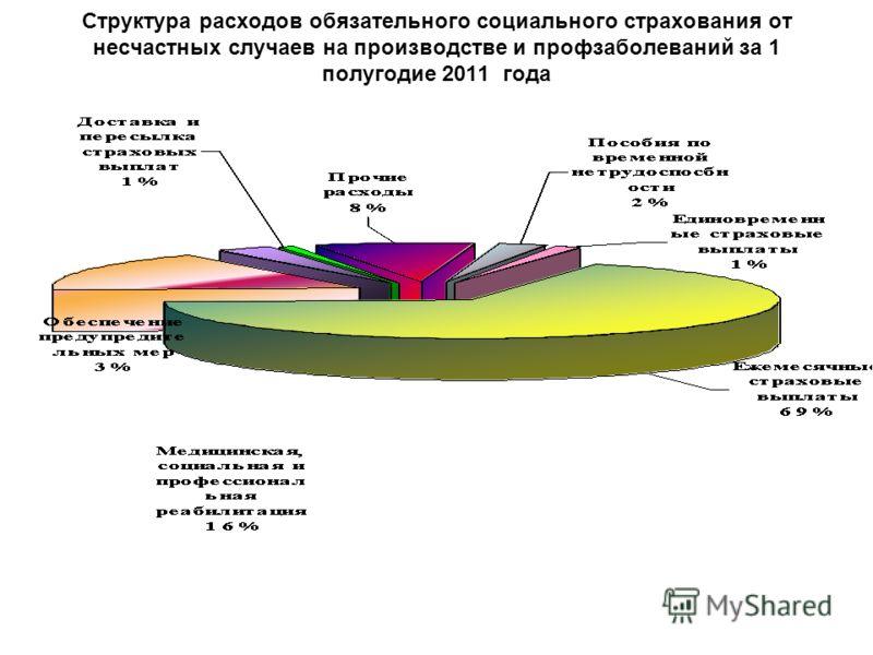 Структура расходов обязательного социального страхования от несчастных случаев на производстве и профзаболеваний за 1 полугодие 2011 года
