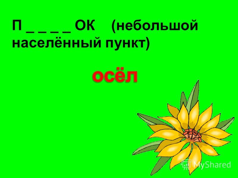 П _ _ _ _ ОК (небольшой населённый пункт)