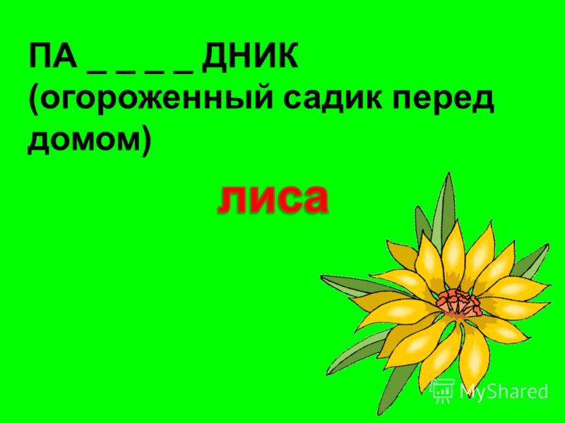 ПА _ _ _ _ ДНИК (огороженный садик перед домом)