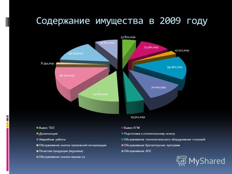 Содержание имущества в 2009 году