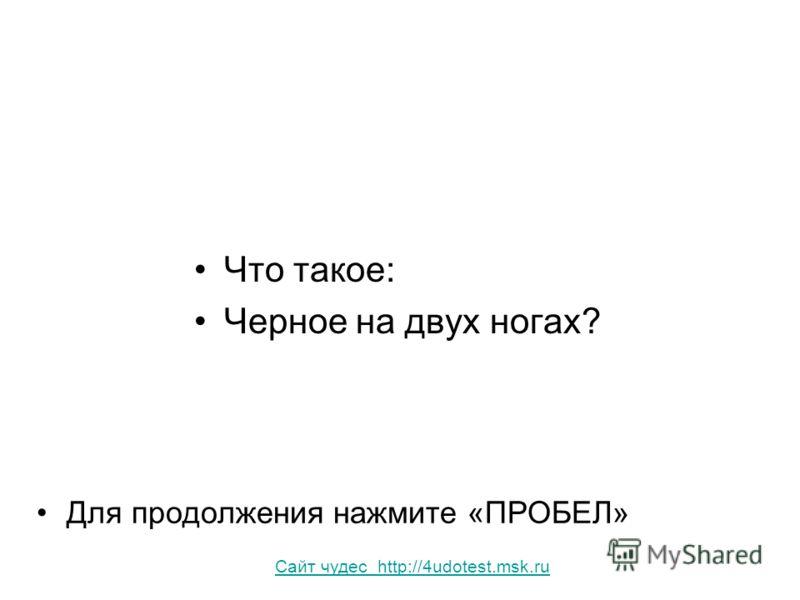 Что такое: Черное на двух ногах? Для продолжения нажмите «ПРОБЕЛ» Сайт чудес http://4udotest.msk.ru