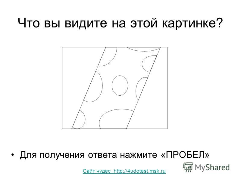 Что вы видите на этой картинке? Для получения ответа нажмите «ПРОБЕЛ» Сайт чудес http://4udotest.msk.ru