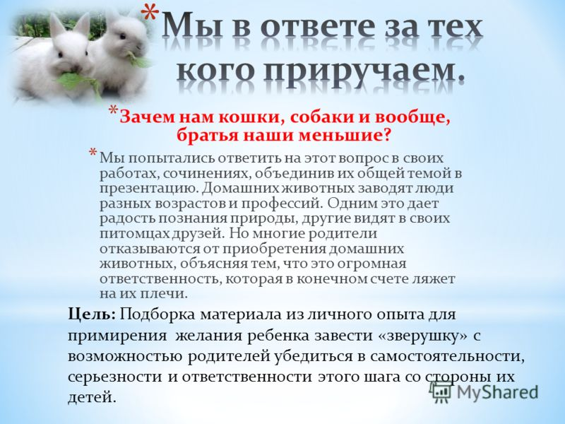 * Зачем нам кошки, собаки и вообще, братья наши меньшие? * Мы попытались ответить на этот вопрос в своих работах, сочинениях, объединив их общей темой в презентацию. Домашних животных заводят люди разных возрастов и профессий. Одним это дает радость