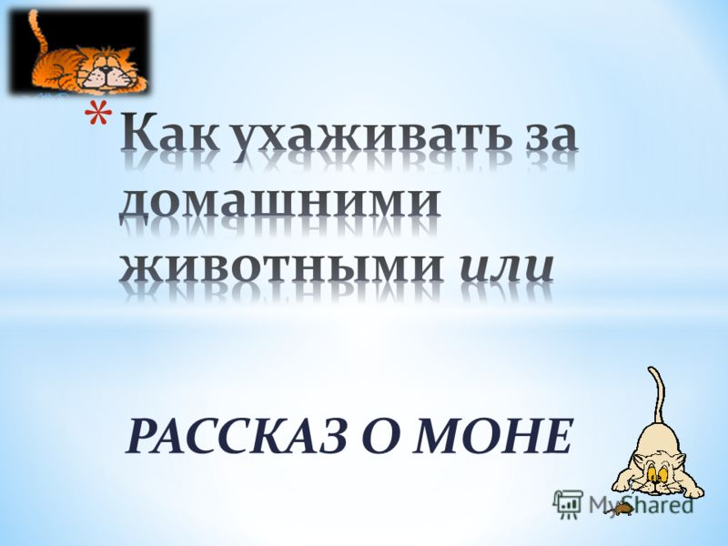 РАССКАЗ О МОНЕ