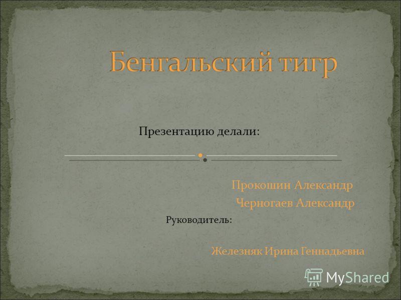 Презентацию делали: Прокошин Александр Черногаев Александр Руководитель: Железняк Ирина Геннадьевна