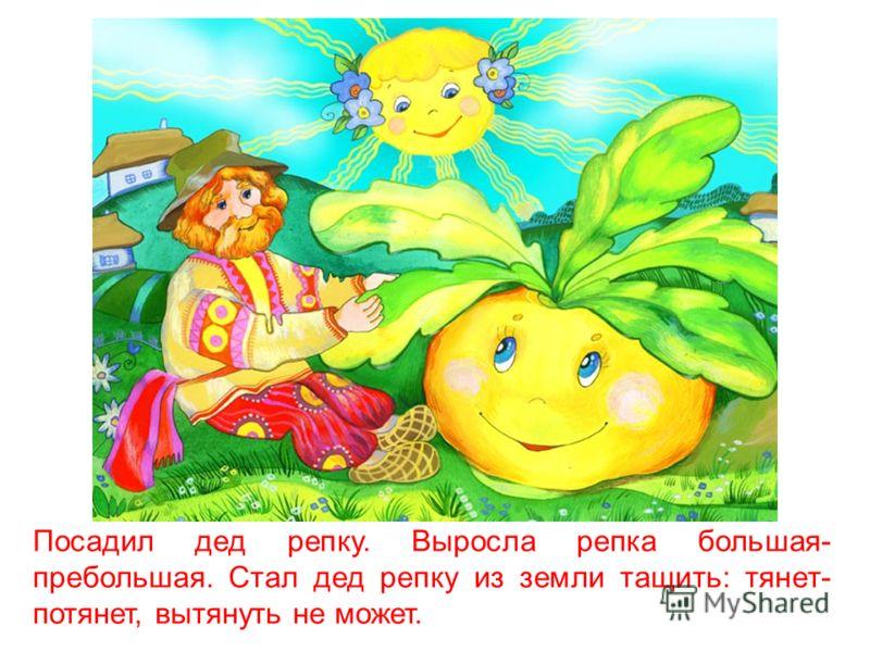 Репка Художник Литвин-Синявская Татьяна