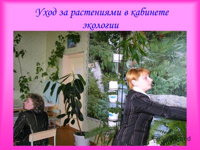 Уход за растениями в кабинете экологии