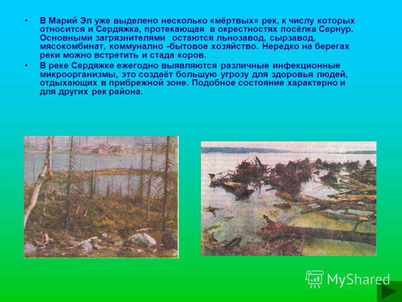 В Марий Эл уже выделено несколько «мёртвых» рек, к числу которых относится и Сердяжка, протекающая в окрестностях посёлка Сернур. Основными загрязнителями остаются льнозавод, сырзавод, мясокомбинат, коммунално -бытовое хозяйство. Нередко на берегах р