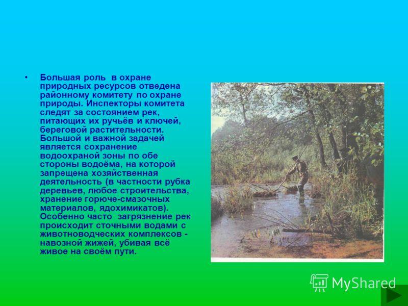 Большая роль в охране природных ресурсов отведена районному комитету по охране природы. Инспекторы комитета следят за состоянием рек, питающих их ручьёв и ключей, береговой растительности. Большой и важной задачей является сохранение водоохраной зоны