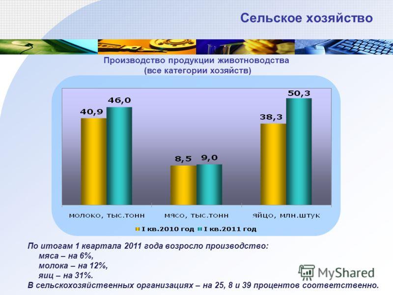 По итогам 1 квартала 2011 года возросло производство: мяса – на 6%, молока – на 12%, яиц – на 31%. В сельскохозяйственных организациях – на 25, 8 и 39 процентов соответственно. Сельское хозяйство Производство продукции животноводства (все категории х