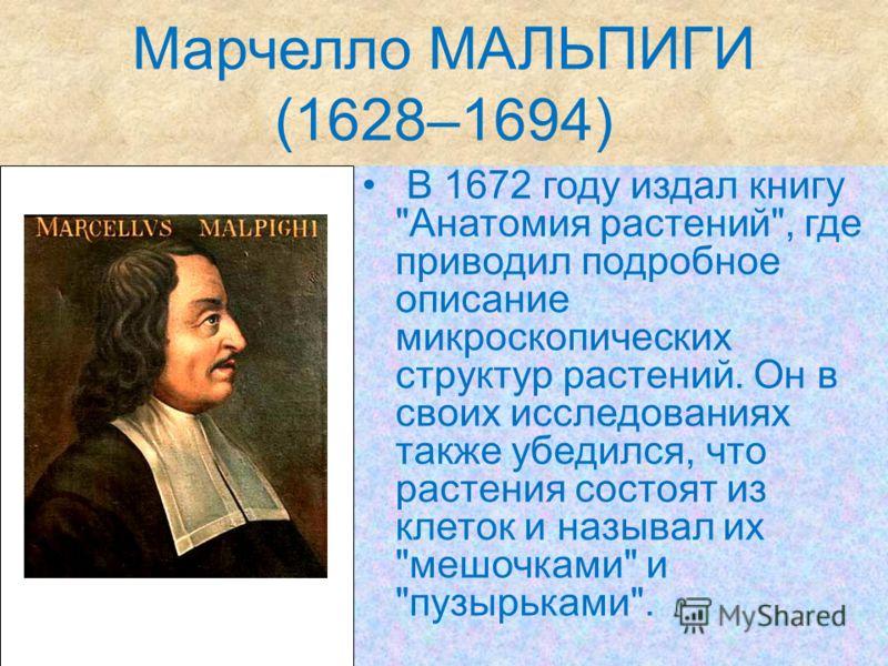 Марчелло МАЛЬПИГИ (1628–1694) В 1672 году издал книгу