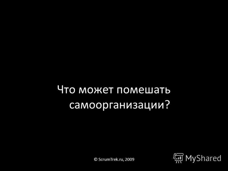 Что может помешать самоорганизации? © ScrumTrek.ru, 2009